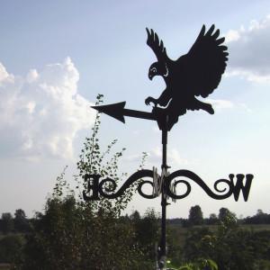 флюгер орел, живое фото